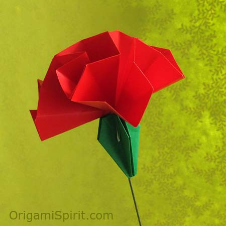 Carnation i learned this carnation from a japanese lad flickr by origami spirit carnation by origami spirit mightylinksfo