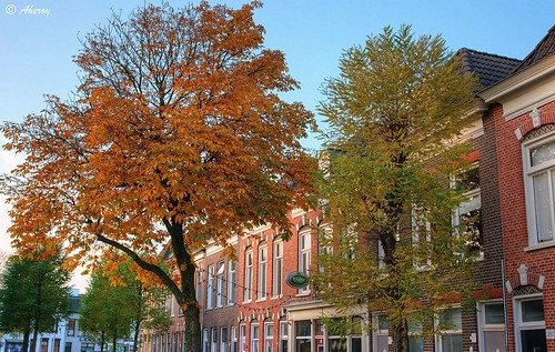 Autumn,Groningen stad,the Netherlands,Europe | by Aheroy