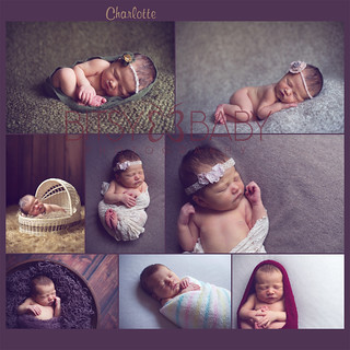 newborn photographer collage | by Bitsy Baby Photography [Rita]