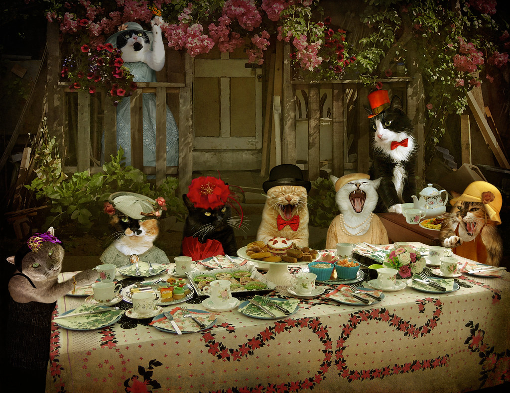 Mad Catter Tea Party (Revd) - enter Miss Poppy! (story bel ...