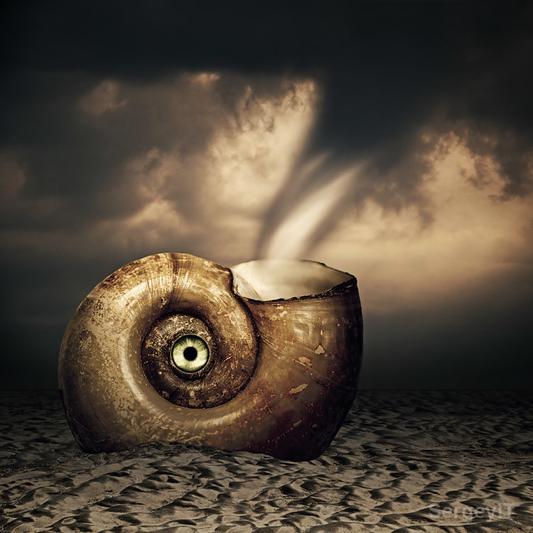 Shell with eye in sand and tornado. Surreal scenery   Flickr