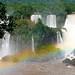 Brazil Rainbow