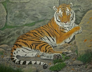 Tiger At Rest (Sold) | by Sid's art
