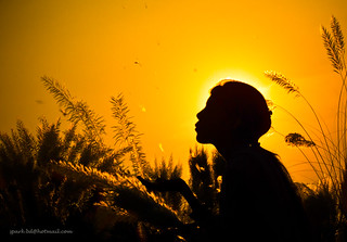 she and her silhoutte @kashbon | by Shahnaz Parvin