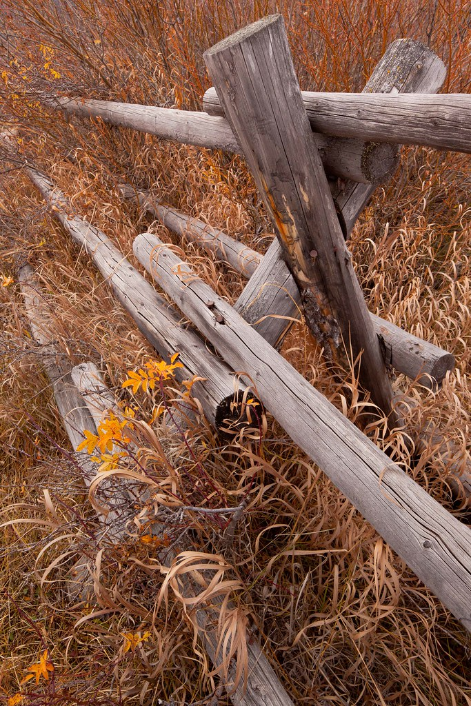 Buck and rail fence by cunningham cabin grand teton np