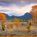Aspens at Galena Summit Idaho