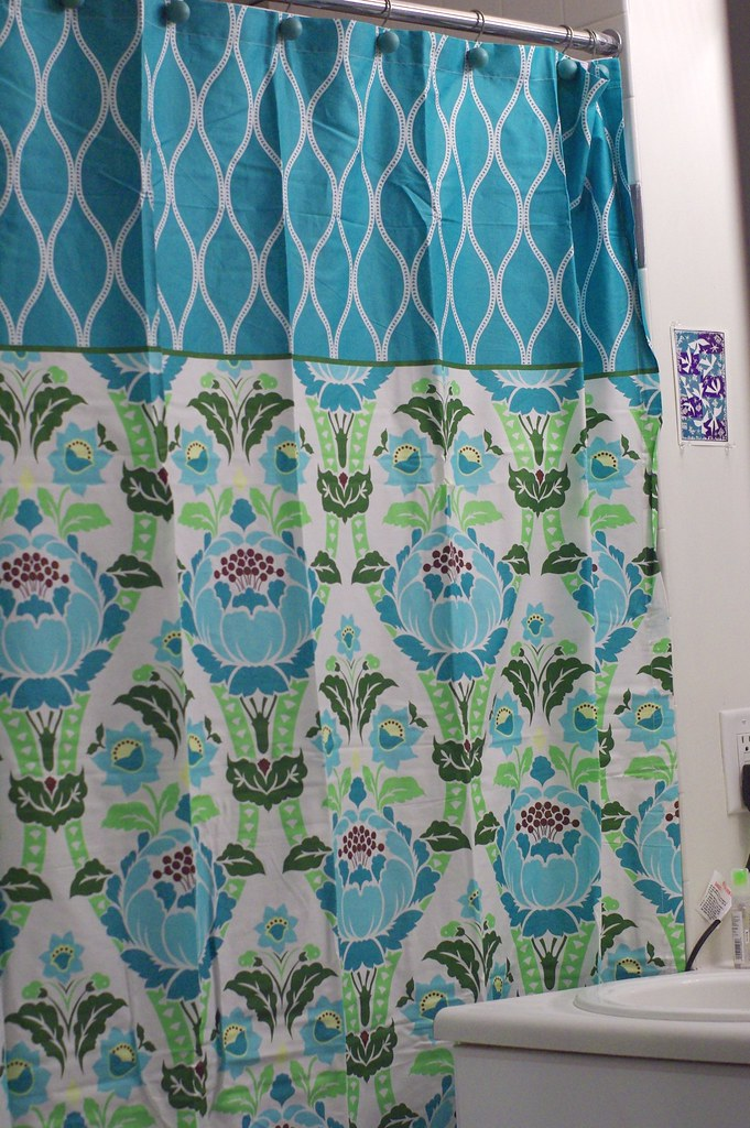 amy butler shower curtain from wck