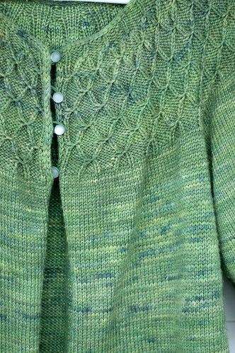 Rhinebeck sweater | by bookgrl