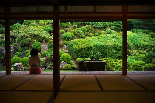 Just Watching The Rain Falls Tisyaku In Temple Kyoto