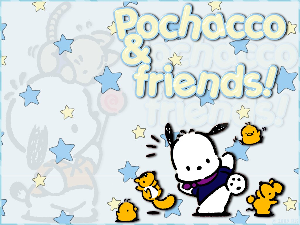 pochacco wallpaper fanniepochacco flickr