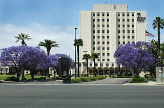 Va Long Beach Healthcare System Map