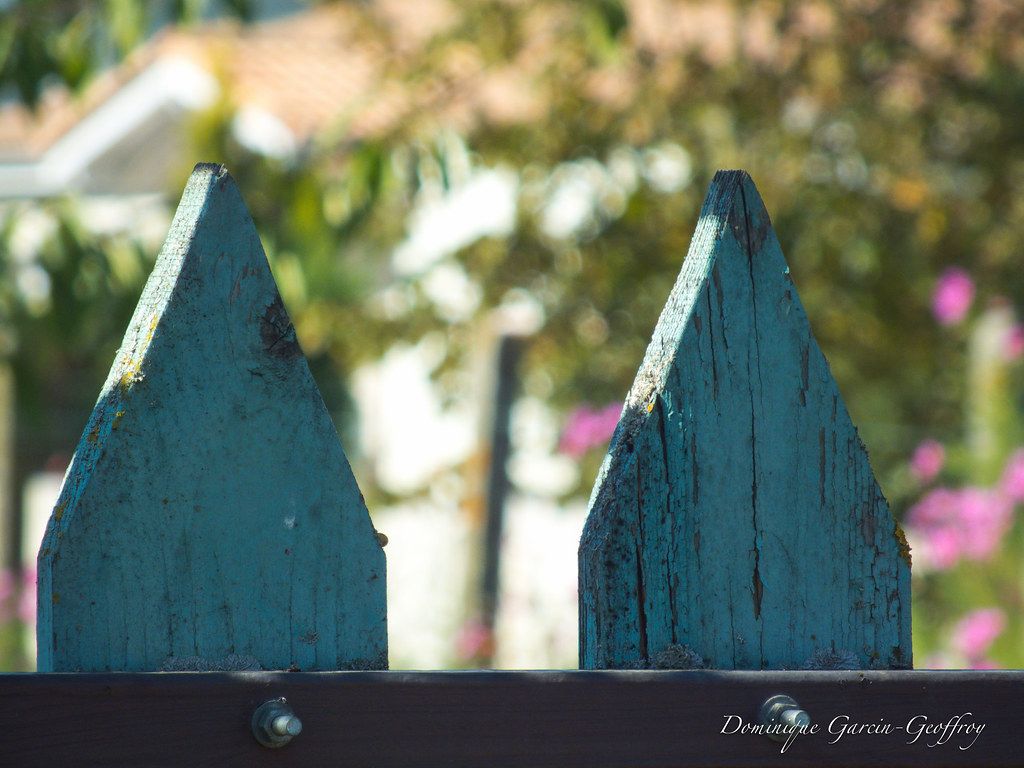 Portillon du jardin 2 bokeh portillon bois peinture for Portillon jardin metal