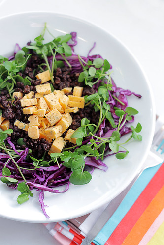 Red Leicester Cheese, Lentils and Red Cabbage | by Salad Pride
