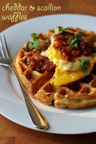savory cheddar and scallion waffles | by awhiskandaspoon