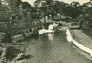 Taronga Park Zoo, Sydney | by State Archives NSW