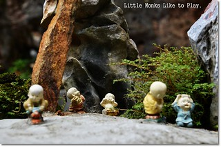 Little Monks Like To Play | by J2Kfm