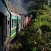 Madagascar - Fianarantsoa-Côte Est railway (FCE)
