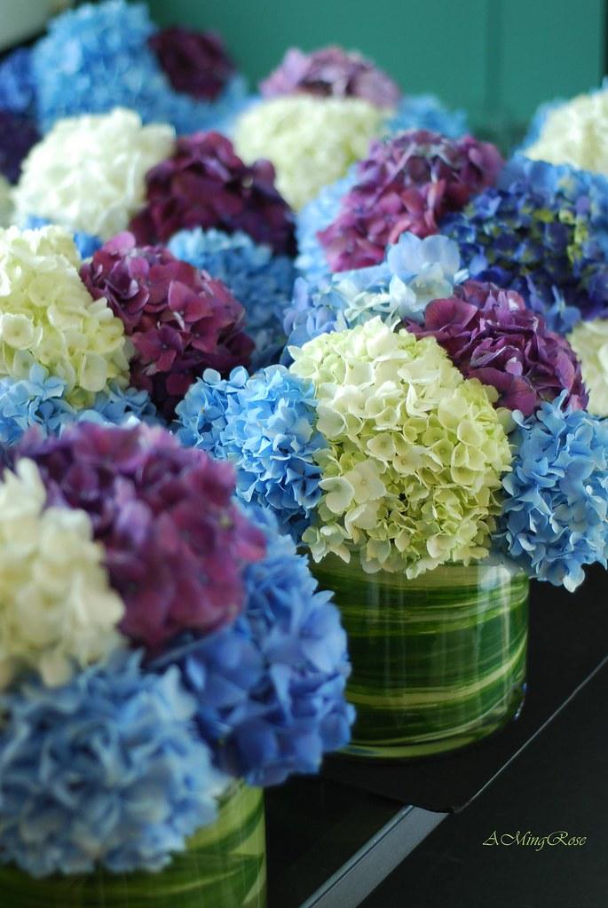 Hydrangea centerpieces blue purple white amrose