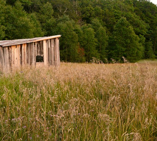 Farmhouse At Dusk: Treat Farm Tool Shed At Dusk