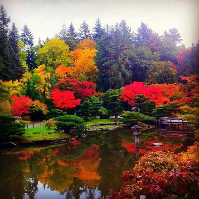 Japanese Inspired Garden In Grant Park: Seattle Japanese Garden In Washington Park Arboretum