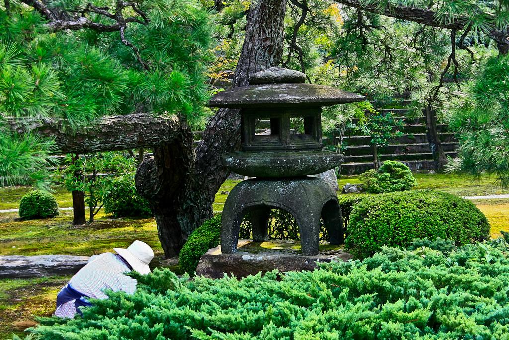 Jard n koun tei en el castillo nij kyoto fran sastre for Jardin kyoto