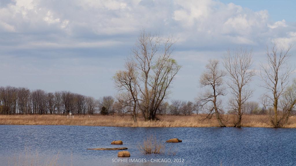 Heidecke lake state fish wildlife area morris il 04 for Heidecke lake fishing report