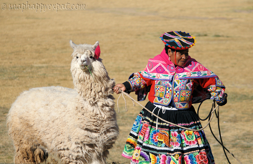 Llama Wrangler | A Peruvian woman, dressed in what I took ...