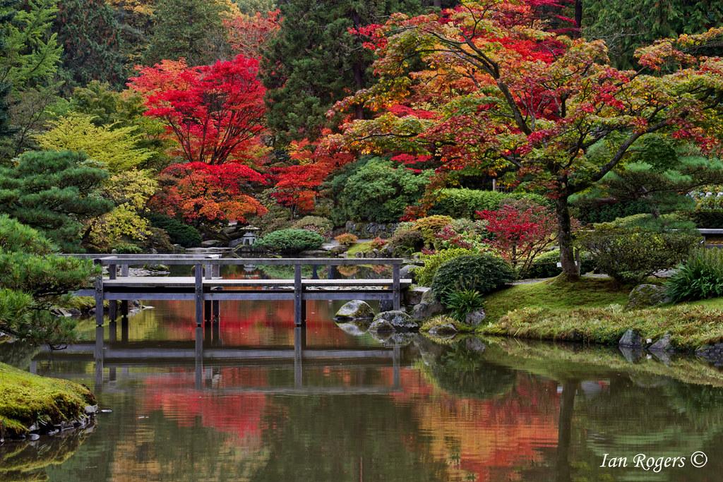 kubota garden by ian rogers - Kubota Garden
