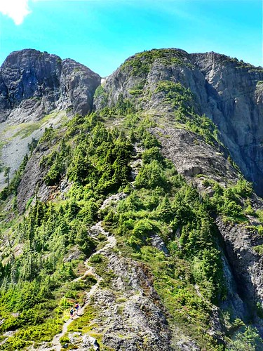 Vit Mt Arrowsmith Start Of Hike From Saddle To Summit Comp