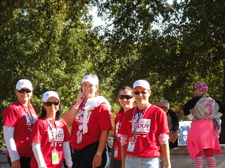 2011 Komen 3-Day Walk - 2 | by DeKalb Medical