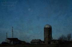 331:365 Blue hour at the farm
