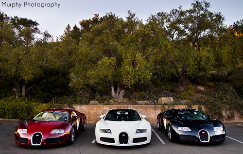 1, 2 or 3 ? | by Murphy Photography