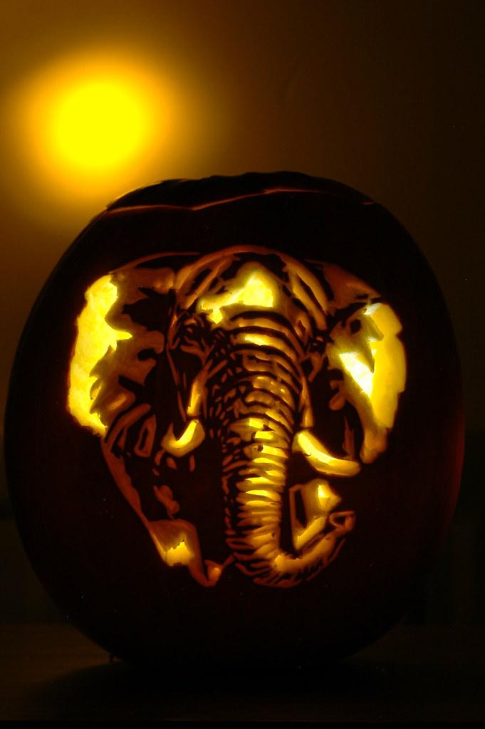 Elephant yellow a pumpkin carving of an elephant for How to carve an elephant on a pumpkin