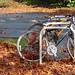 2 Mile Challenge Autumn