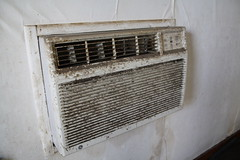 Black Mold on AC After Flood