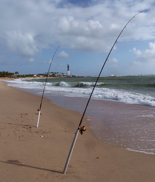 Shoreline surf fishing flickr photo sharing for Surf fishing florida