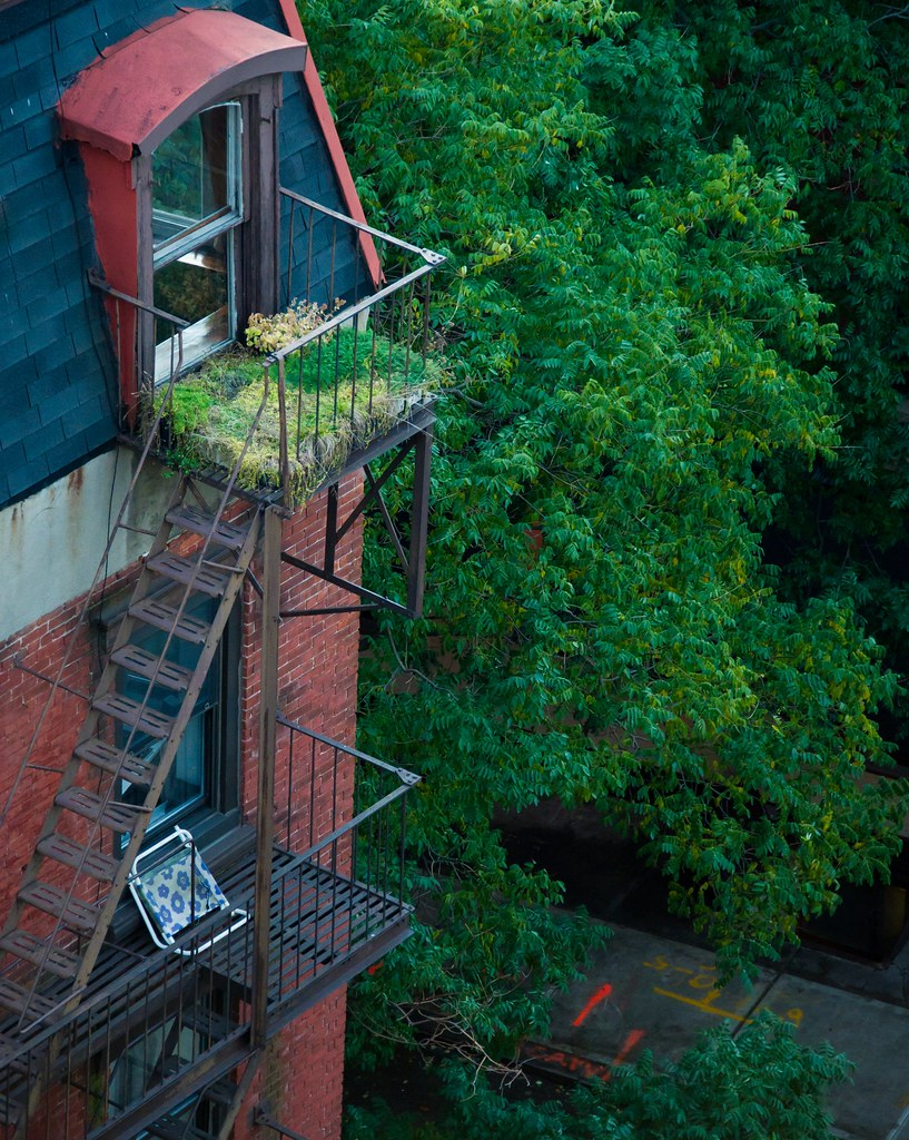 Avant Garden Freenyc Graphic Design Defined By: The Fire Escape Serves As Garden Or