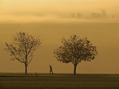 Lonesome runner | by RainerSchuetz