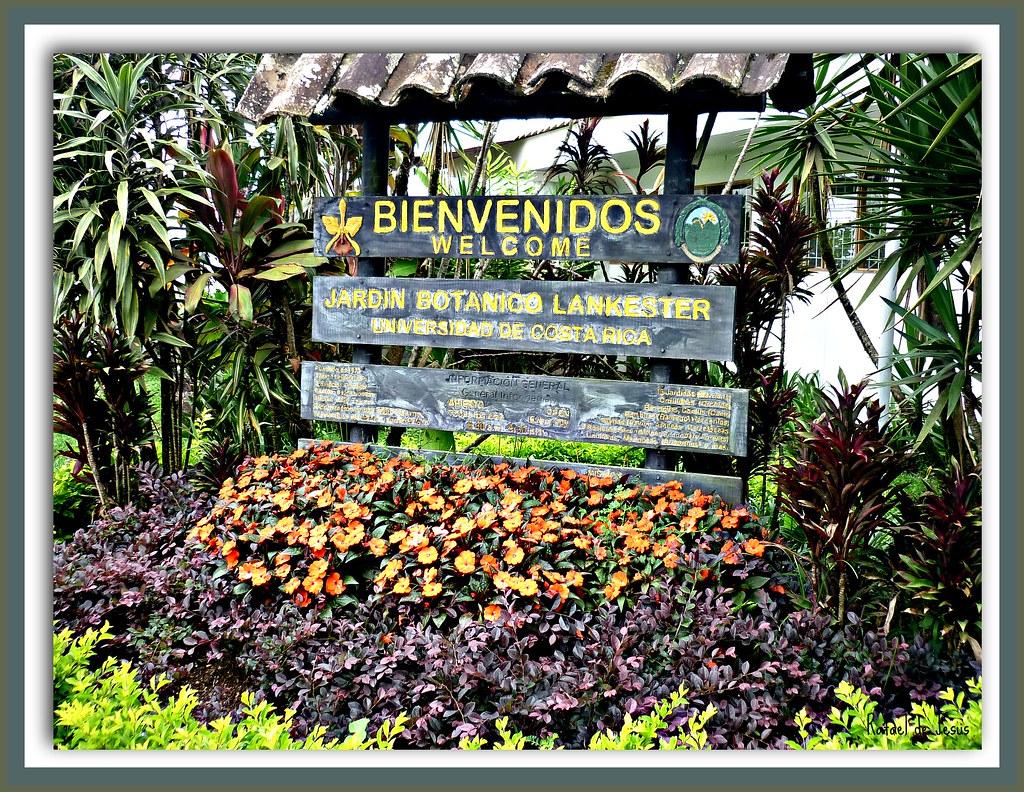 Jardin botanico lankester cartago costa rica la for Jardines costa rica