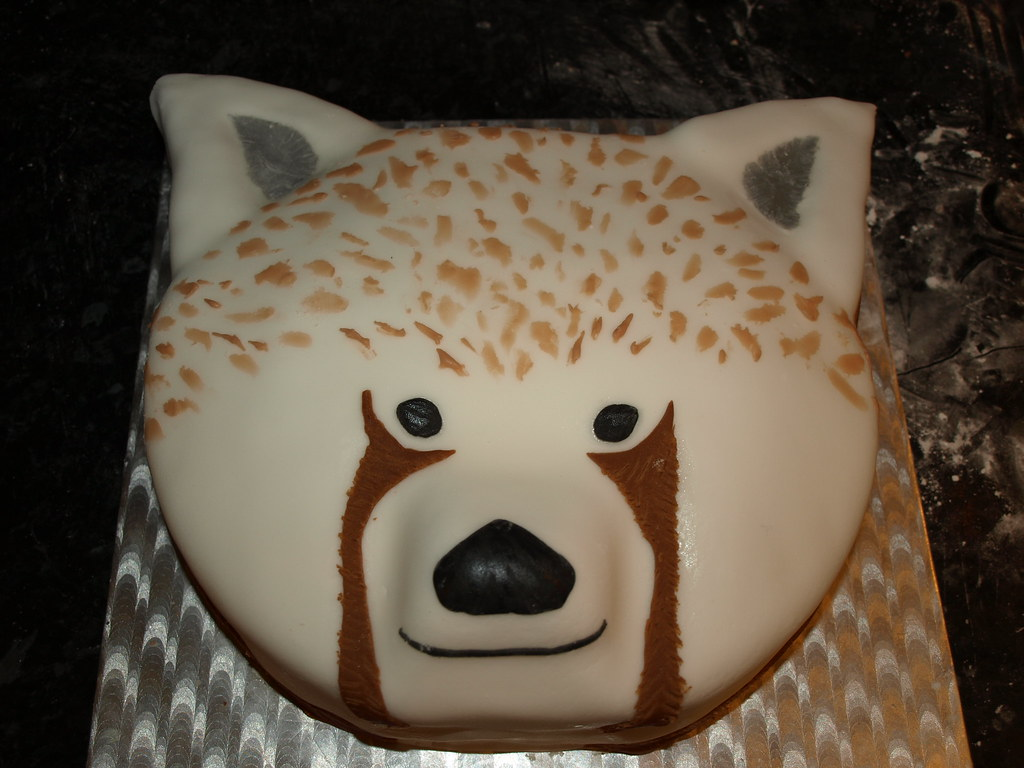 Red Panda Cake Made By David Here Is My Birthday Red Panda Flickr