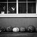 Pumpkins at ZURB