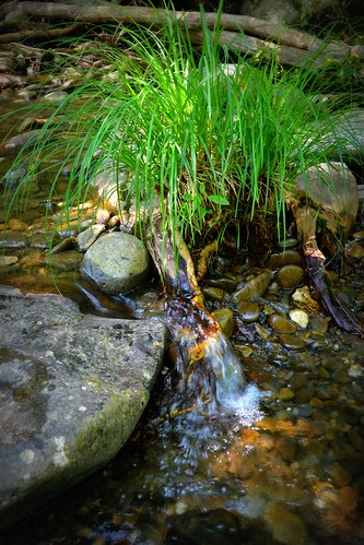 Flowing Water Gatlinburg 2011 | by beetle662