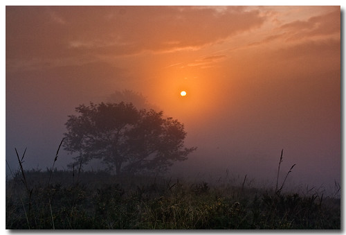 Mysterious sunrise | by Pili de la Cruz