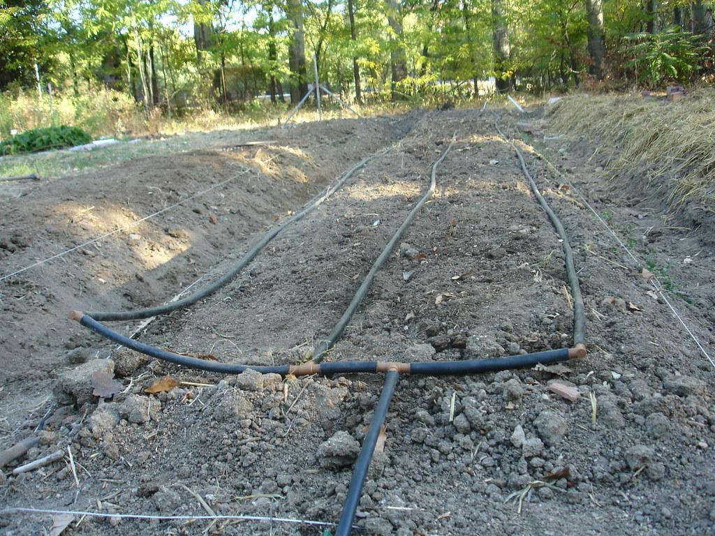 Riego por goteo en bancal 3 45 jornada 14 de octubre for Sistema de riego por aspersion para jardin