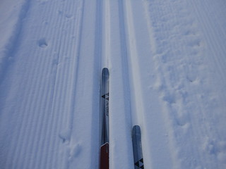 cross country skiing trail | by Peter Sitte