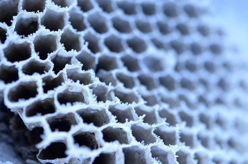 frosty comb_128 | by coco knits