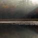 Sunrise on Fountain Pond