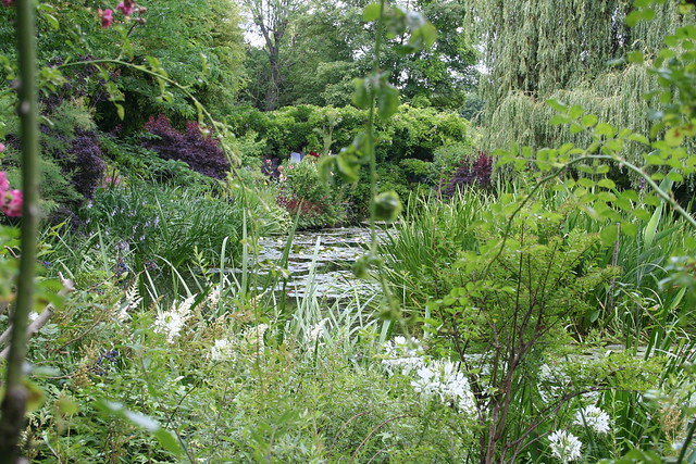 Photo - Les jardins de monet ...