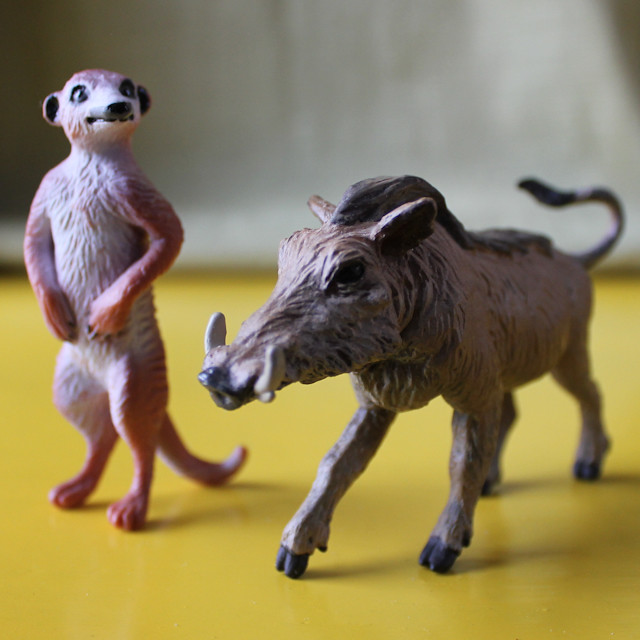 warthog and meerkat relationship quotes