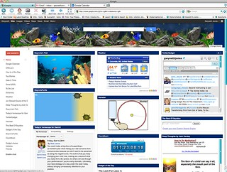 iGoogle Page w/ Twitter Gadget | by The Daring Librarian